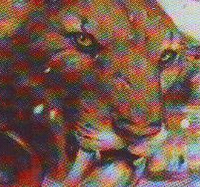 [ Animale] Tigre dai denti Sciabola D&D 3.5